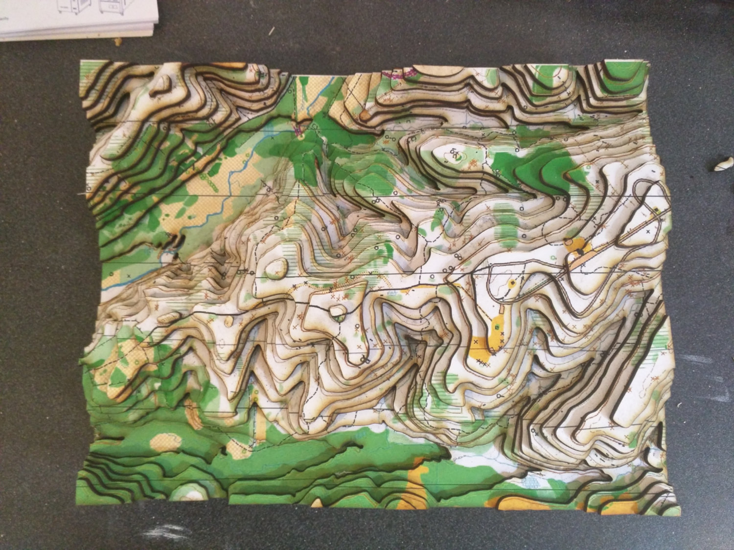 3D Orienteering Map - Wooden Accurate Topographical Map - Cartographic Map of a Virginian Valley